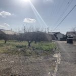 和歌山市井辺!売土地!坪単価約8.6万円!土地113.74坪!